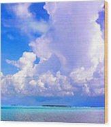 Florida Bay At Shell Pass Filtered Wood Print