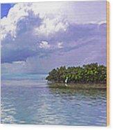 Florida Bay Island Filtered Wood Print