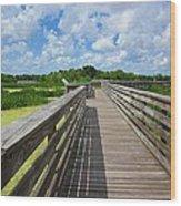 Florida Boardwalk Wood Print