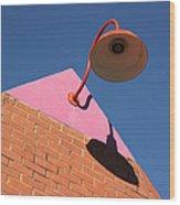 Shadow Of The Lantern Wood Print
