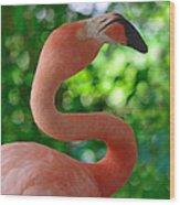 Florida Classic Wood Print
