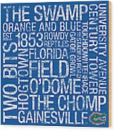 Florida College Colors Subway Art Wood Print by Replay Photos