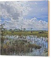 Florida Everglades 0173 Wood Print