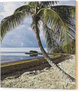 Florida Keys Beach Wood Print