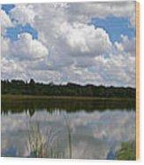 Florida Lake 1 Wood Print