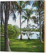 Florida Lake Wood Print