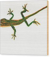 Florida Lizard Wood Print