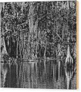 Florida Naturally 2 - Bw Wood Print
