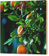 Florida Oranges Wood Print