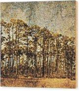 Florida Pine 4 Wood Print