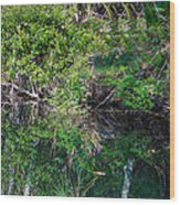 Florida River Wood Print