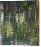 Florida Silver Springs River Wood Print by Christine Till