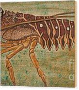 Florida Spiny Lobster Wood Print