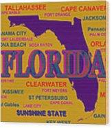 Florida State Pride Map Silhouette  Wood Print