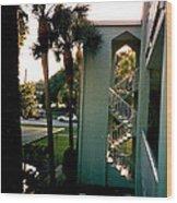 Florida Trees 3 Wood Print