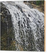Florida Waterfall Wood Print