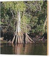 Florida Waterways 2 Wood Print