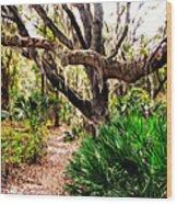 Florida Woods Wood Print