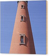 Florida's Tallest Wood Print