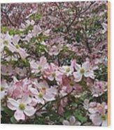 Flourishing Pink Magnolias Wood Print