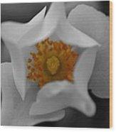 Flower 02 Wood Print