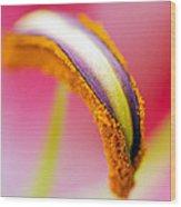 Flower 148 Wood Print