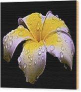 Flower 171 Wood Print