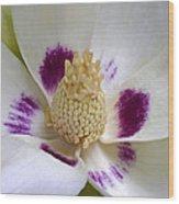 Flower 179 Wood Print