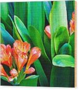 Flower 40 Wood Print