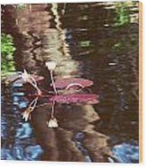 Flower And Lily Pad Wood Print