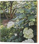 Flower And Tree At Msu Wood Print