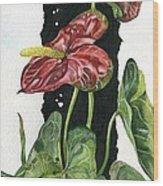 Flower Anthurium 01 Elena Yakubovich Wood Print by Elena Yakubovich