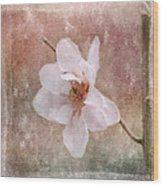 Flower Art - Nature Reminds Us Wood Print