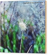 Flower As A  Painting Wood Print