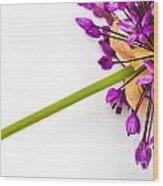 Flower At Rest Wood Print