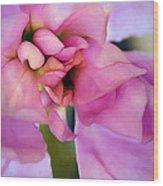 Flower At Twilight Wood Print