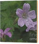 Flower Bath Wood Print
