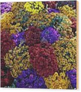 Flower Bed Across The Street From The Grand Palais Off Of Champs Elysees  Wood Print