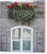 Flower Box Old Quebec City Wood Print