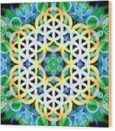 Flower Bubbles Wood Print