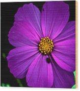 Flower Bug- Viator's Agonism Wood Print by Vijinder Singh