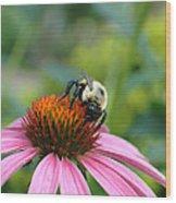 Flower Bumble Bee Wood Print