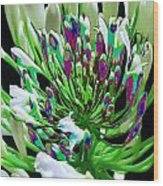 Flower Bunch Bush Sensual Exotic Valentine's Day Gifts Wood Print