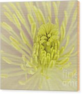 Flower Centre Wood Print