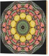 Flower Drum Wood Print