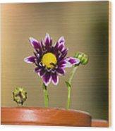 Flower Family Wood Print