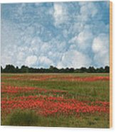 Flower Fields Forever Wood Print