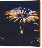 Flower Fireworks Wood Print