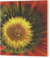 Flower Fractal Wood Print
