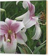 Flower Garden 20 Wood Print